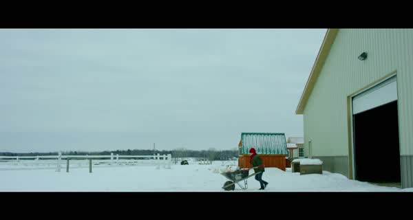 bande-annonce Albion: The Enchanted Stallion