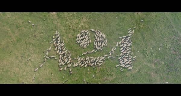 bande-annonce Lamb