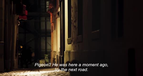Monsieur Pigeon